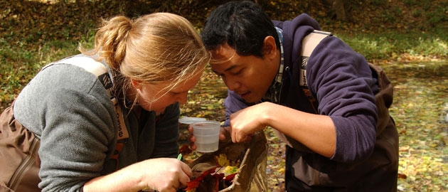 Students of the zoology graduate program inspecting creek contents